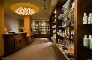 Shopping for the Holidays and a Brand New You for 2010 at Capella Spa Boutique