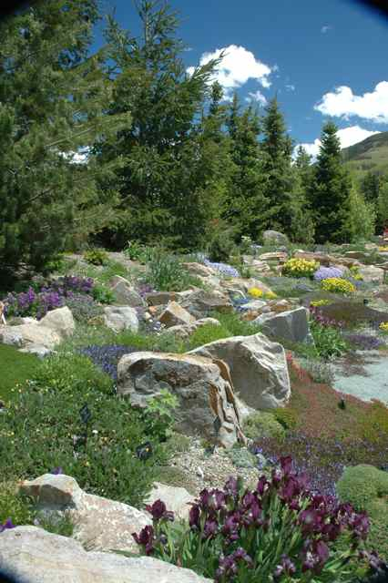 Vail Summer Fun: Enjoying The Ford Legacy Amidst Blooms