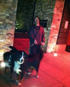 Valet AKA Dog Walker Par Excellence at the Westin Riverfront