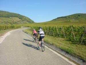 On the Route des Vins en Alsace