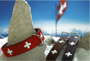 Swiss Criss Dog Collars