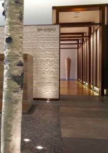 Embarking Upon a Tranquil Journey at Spa Anjali