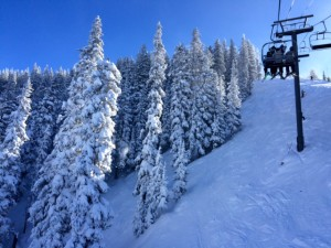 Sugar-Frosted Trees at Telluride Ski Resort