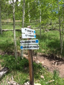 Telluride Mountain Village Hiking Signs