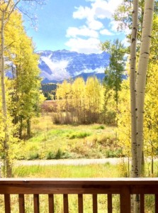One of Many Photos from My Visit Back in Colorado During Peak Leaf Peeping