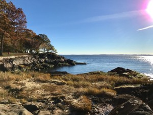 Breathing in Nature on the Long Island Sound