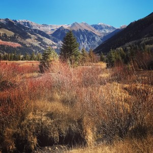 Telluride this Week: A View Far from DC