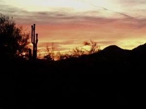 Top Reasons to go to Carefree, Cave Creek and North